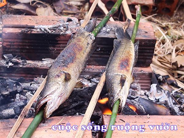 cá lóc nướng trui miền tây - nướng cá