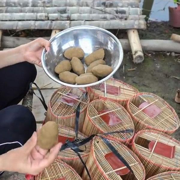 cách làm mồi đặt lọp tép từ cám gạo
